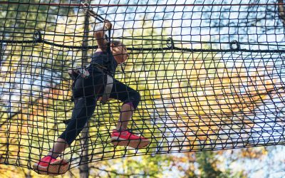 Treetop Adventure Course Announces 200,000 Renovation