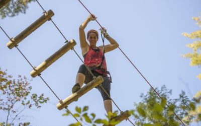 What is an Aerial Tree Top Adventure Course?